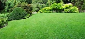 3 étapes essentielles pour réussir son aménagement de jardin