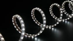 Tout savoir sur les tubes LED