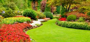 Quelques conseils pour aménager son jardin à Strasbourg