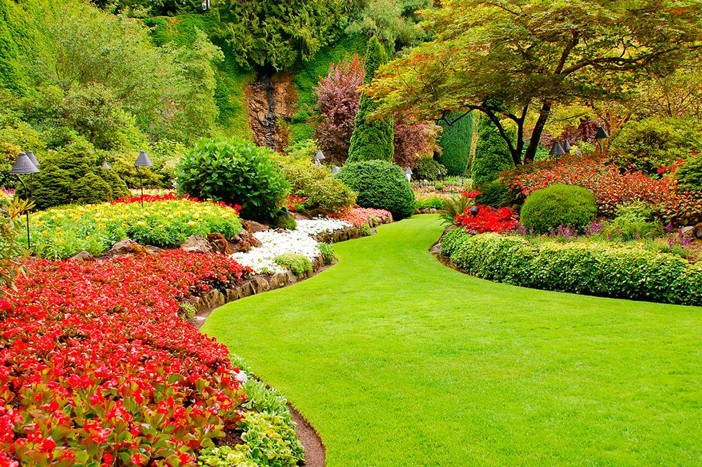 Paysagiste : la solution pour un jardin agréable et optimisé !