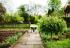 Comment aménager un beau jardin ?