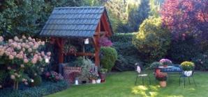 Pourquoi est-il nécessaire de prendre soin de son jardin ?