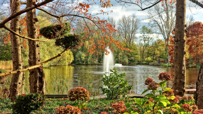 Quelles sont les astuces pour avoir un jardin de rêve ?