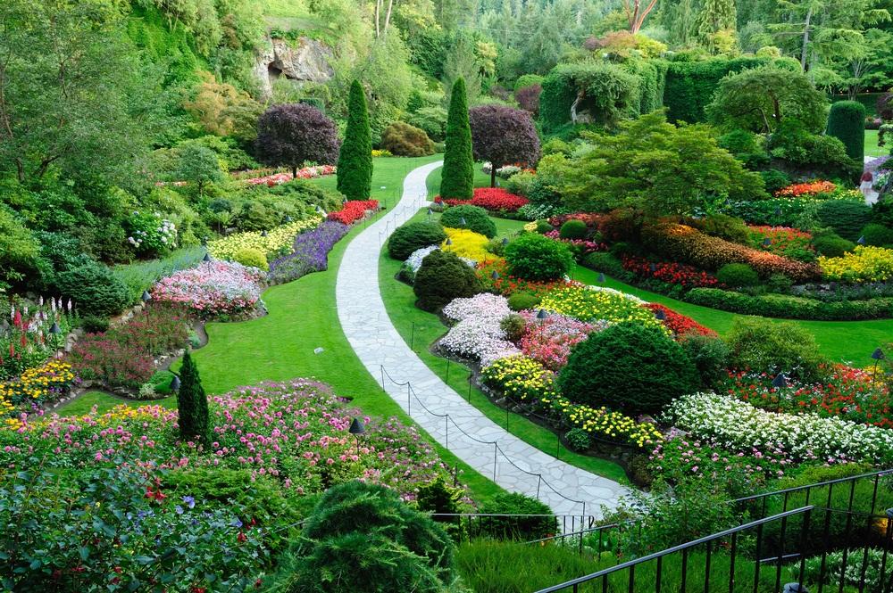 Decouvrez Ces Quelques Astuces Pour Avoir Un Jardin De Reve