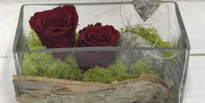 Idée déco : la rose éternelle