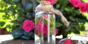 Quels sont les avantages d'utiliser des huiles essentielles à la maison ?