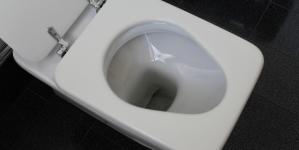 Choisir une toilette selon ses besoins