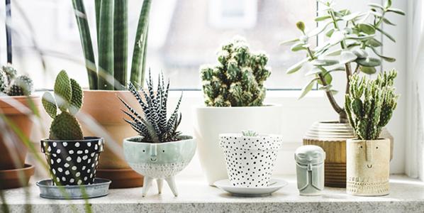 Toutes les idées pour bien décorer votre intérieur de maison
