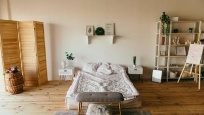 Quelles plantes choisir pour votre chambre ?