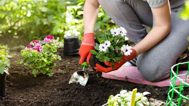 Où proposer ses services de jardinage?