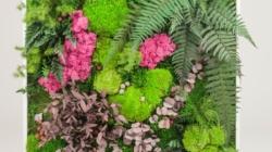Les décorations murales végétales : la tendance du moment